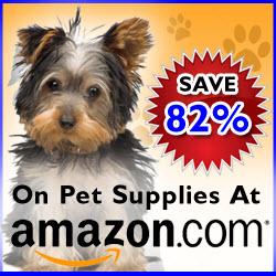 dog banner ad
